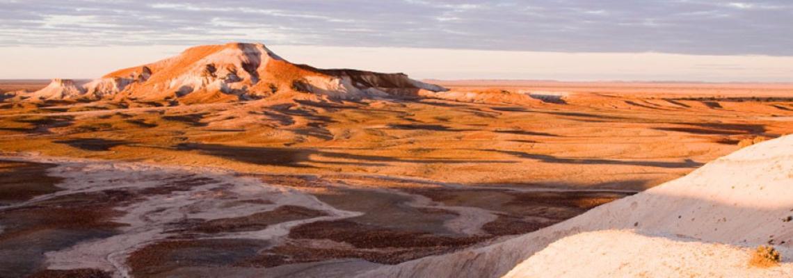 TAS_uBanner_coloured_desert